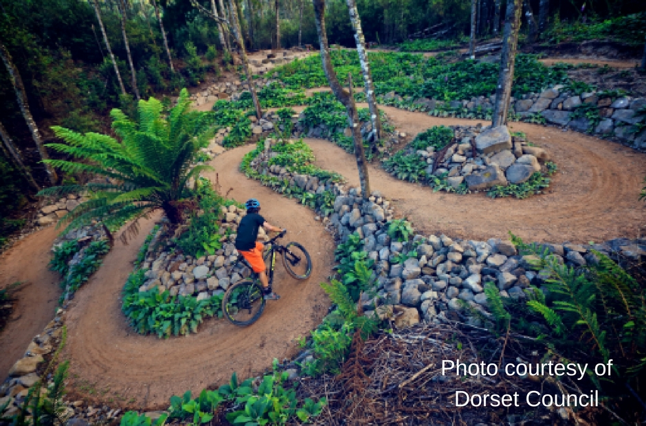 Roaring 40s Kayaking Blog - Mountain Biking in Tasmania