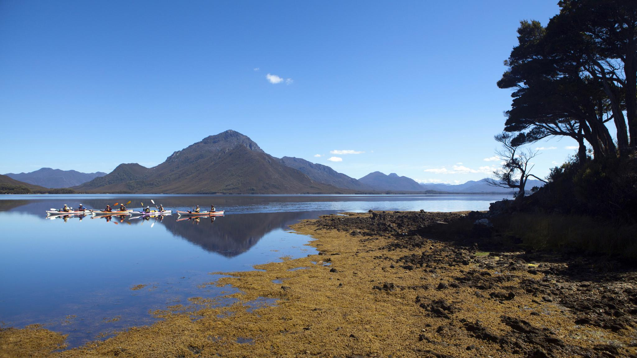 Roaring 40s Kayaking - Kayaking adventure tour on Bathurst Harbour, Southwest Tasmania