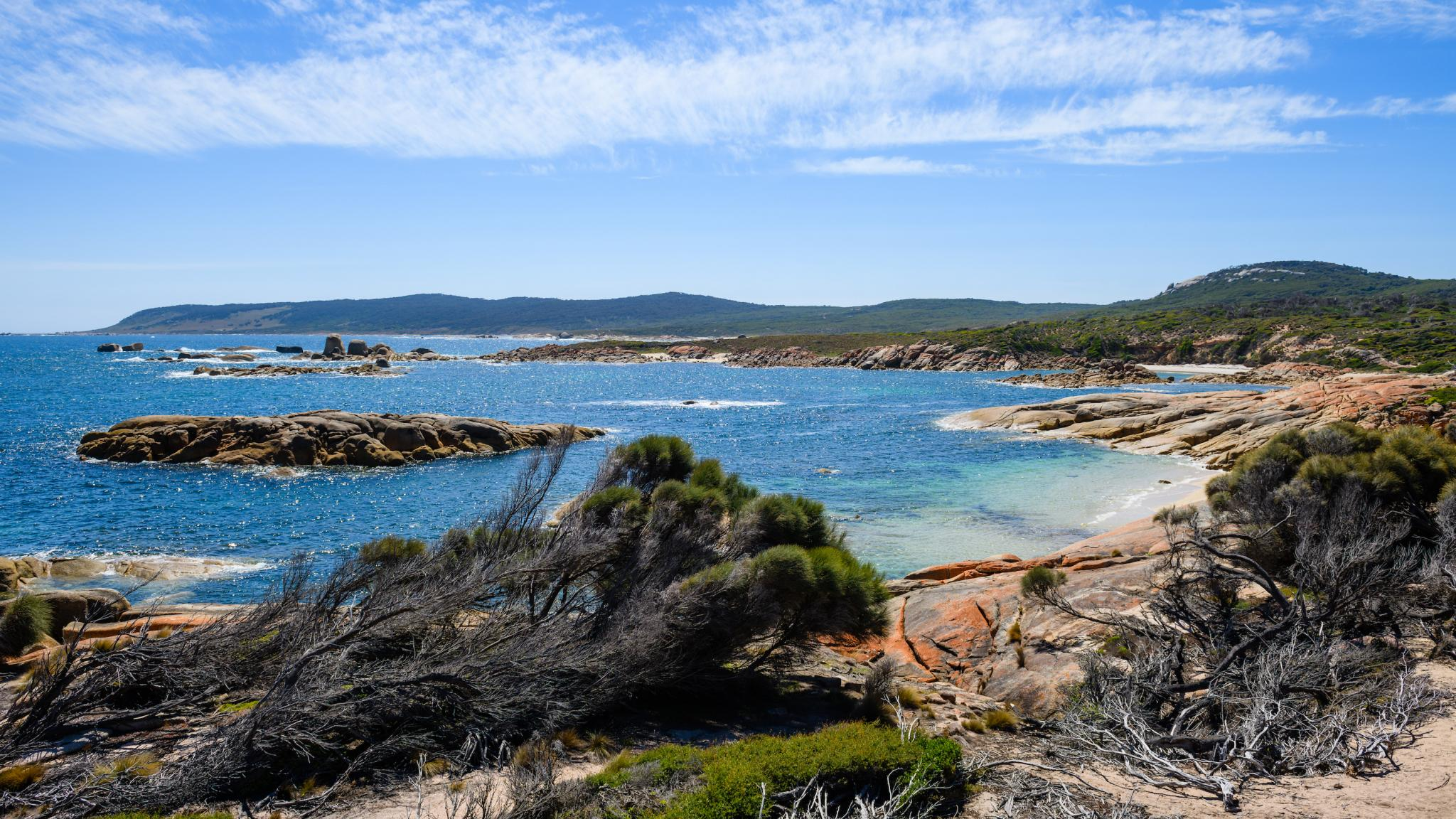 Roaring 40s Kayaking - Stunning beaches and coastline of Flinders Island explored on a sea kayaking tour