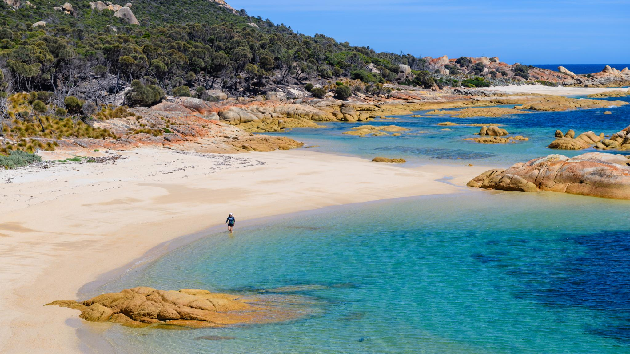 Roaring 40s Kayaking - Kayaking adventures on Flinders Island, Tasmania