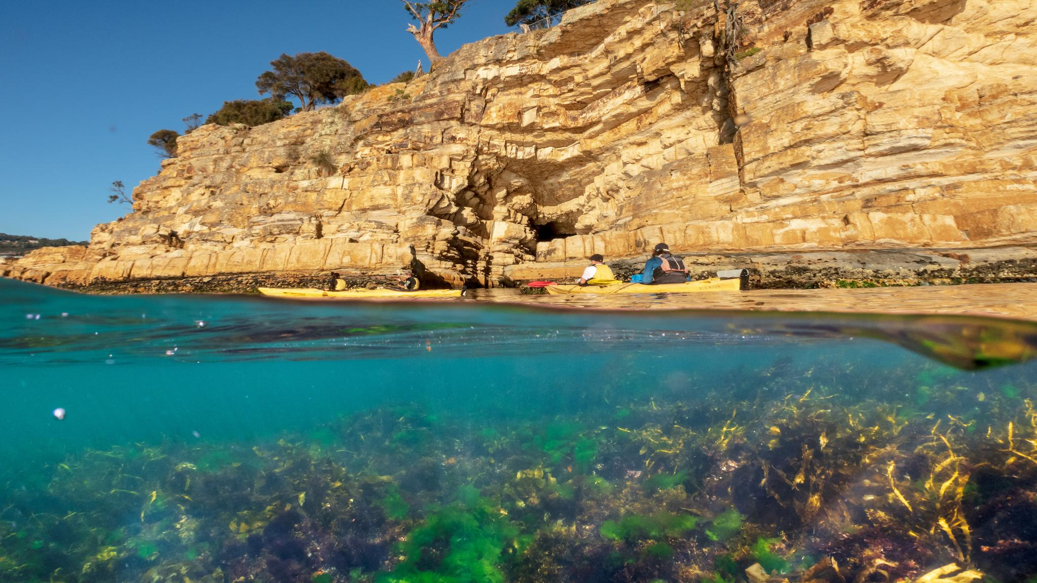Roaring 40s Kayaking - Adventure kayaking tour along Hobart's Cliffs, Caves and Beaches