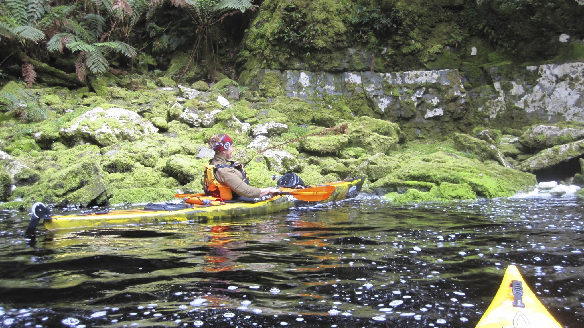 Multi day wilderness kayaking adventures on the Gordon River