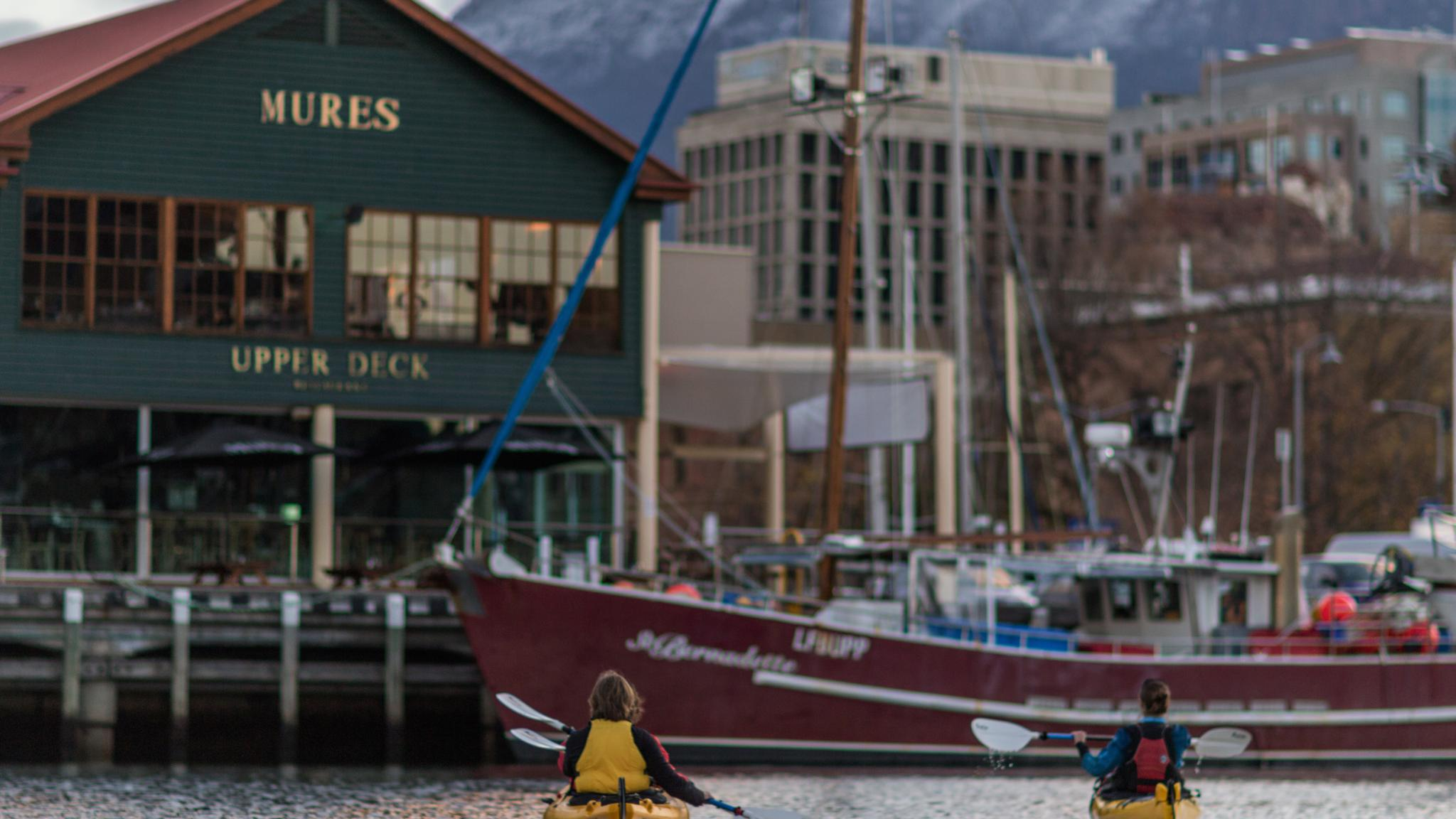 Roaring 40s Kayaking - Kayaking adventure on the Hobart Waterfront - One of the best things to do in Hobart