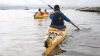 Roaring 40s Kayaking - Learn to sea kayak Hobart Tasmania